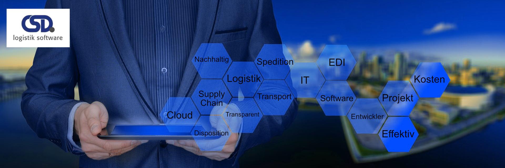 Consulting von CSD Logistik und Transport Software